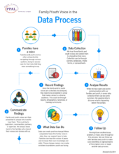 Family Youth Voice in Data Process